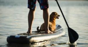 Oppustelige stand up paddle boards fra Uhrdal